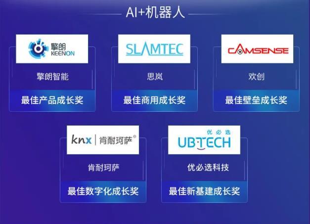 2020 AI 最佳成长榜